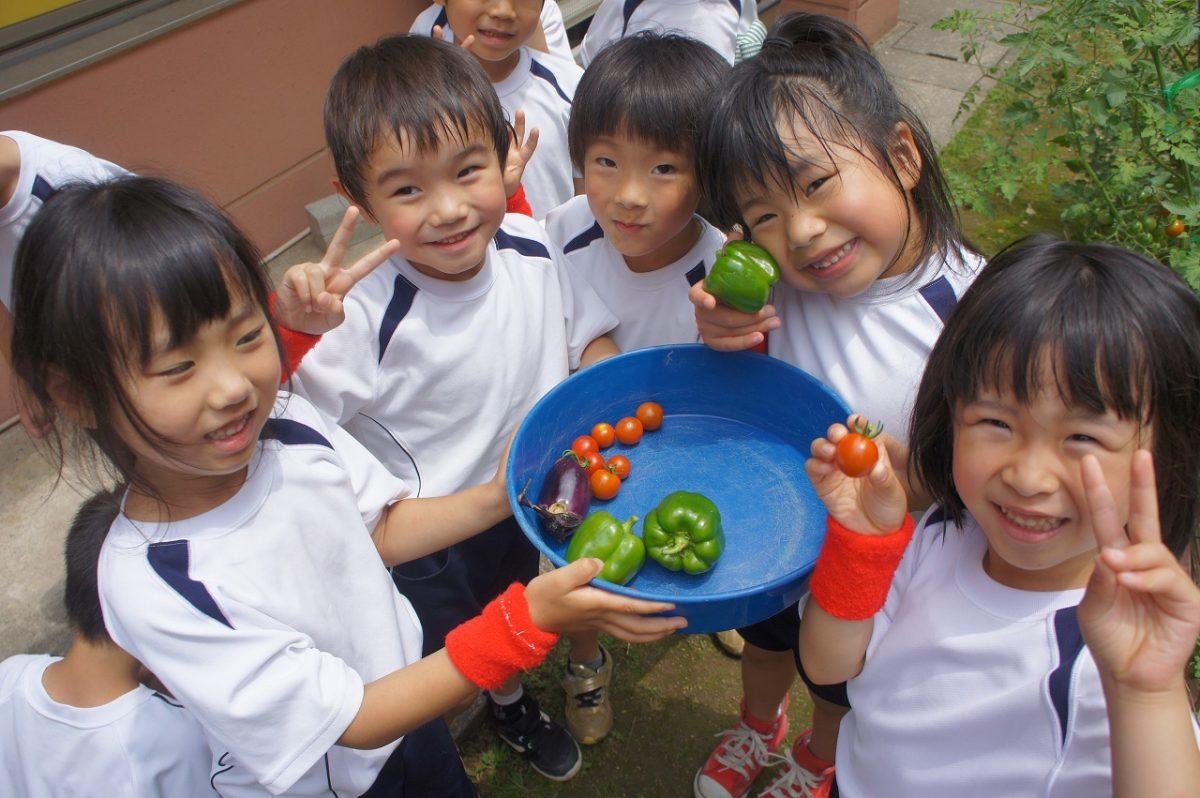 美味しそうな野菜がたくさん!(こすもす)